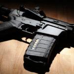 EDITORIAL: Gun study bills raise questions