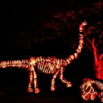 Ellms Family Farm offering Halloween drive-thru fun
