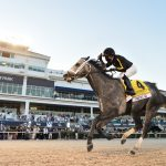 Knicks Go rolls in Pegasus World Cup
