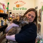 Outlook 2021: Cat-themed shop flourishing after pandemic move to Schenectady Trading Company