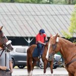Saratoga backstretch childcare center coming this summer