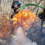 Niskayuna firefighters respond to tire, brush fire; Smoke could be seen for miles