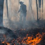 Images: Photos from Saturday's tire and brush fire in Niskayuna