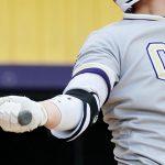 High schools: CBA wins Section II Class AA baseball title