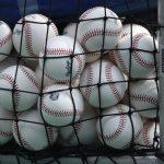 Albany Athletics host Baseball Fest renewal