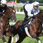 Jim Dandy will mark first start for Risk Taking since Preakness dud