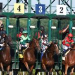 Today in Saratoga: What's happening Monday, July 26
