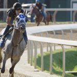 Today in Saratoga: What's happening on Saturday, July 31