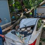 Photos: Tree falls on home, cars Tuesday night in Scotia