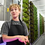 City Mission's farm-to-table operation from shipping container off to healthy start