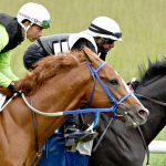 Today in Saratoga: What's happening on Wednesday, Aug. 4