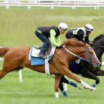 King Fury trying the turf as alternate route to Travers