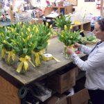Niskayuna-based Felthousen's Florist opens third retail shop in Guilderland
