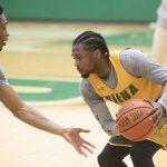 Siena, Saint Rose set for men's basketball exhibition game