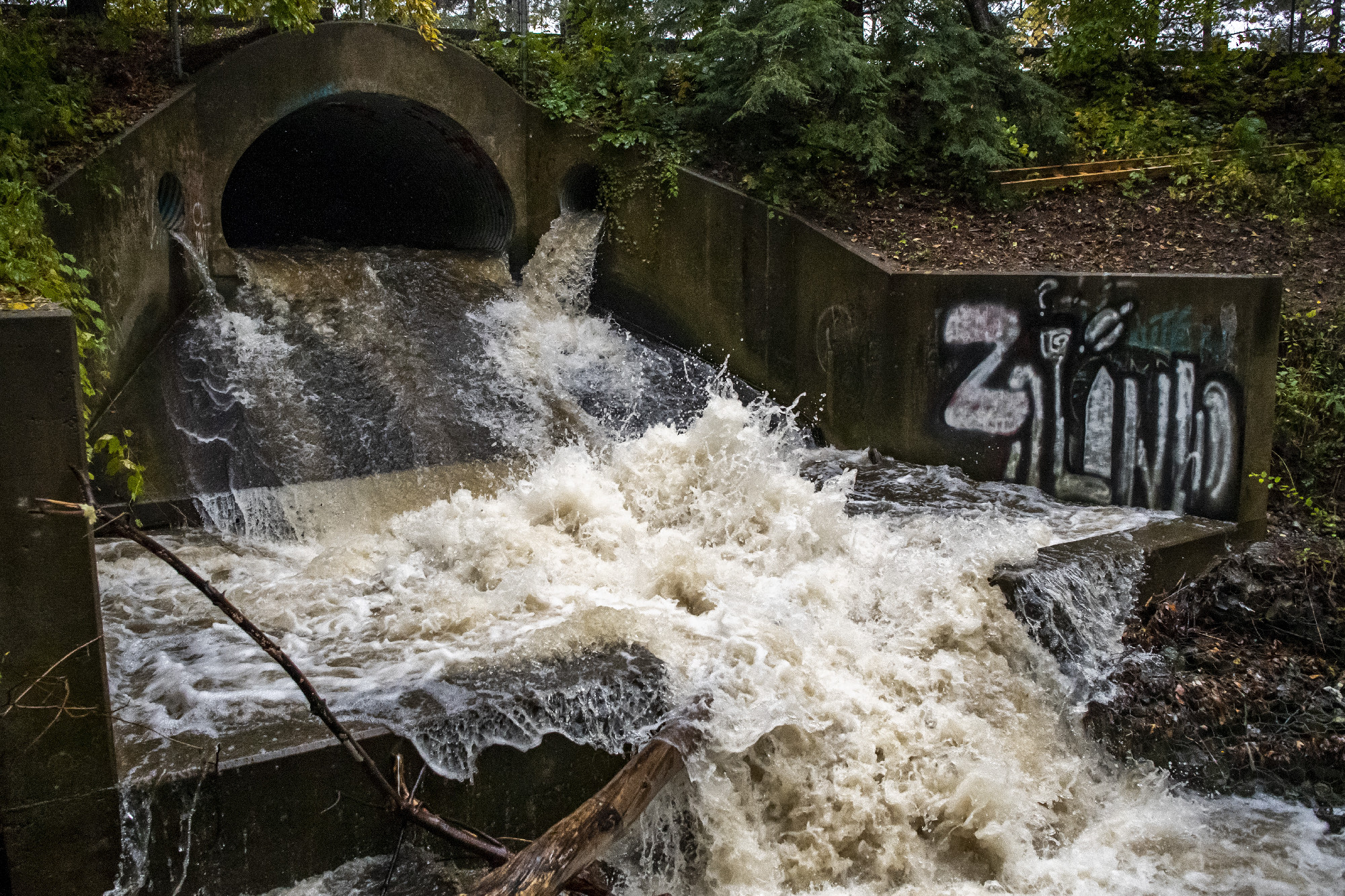 Capital Region slammed with rain, state of emergency leads to special ballots for first responders