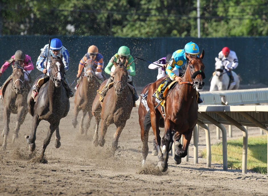 American Pharoah leads the field en route to victory in the Haskell Invitational at Monmouth Park in New Jersey. The New York Racing Association will cap attendance for the Travers Stakes at Saratoga at 50,000. This policy will be in place whether or n...