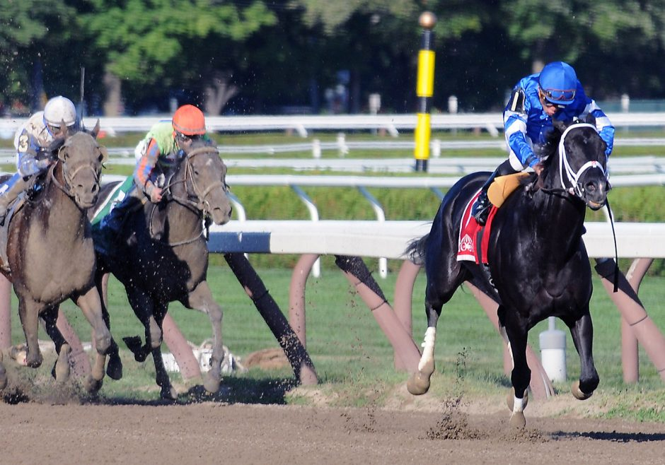 Bay of Plenty, with Joel Rosario up winning The Alydar in the home stretch at the Saratoga Race Course on Sunday August 9, 2015.