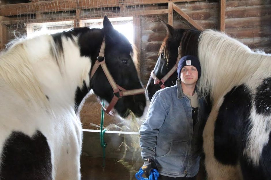 Glenville farmer Joshua Rockwood stands with horses Romeo and Juliet after the pair was returned to his farm, West Wind Acres, on Wednesday morning. The animals were confiscated from Rockwood when he was charged with 13 misdemeanor counts of animal abu...