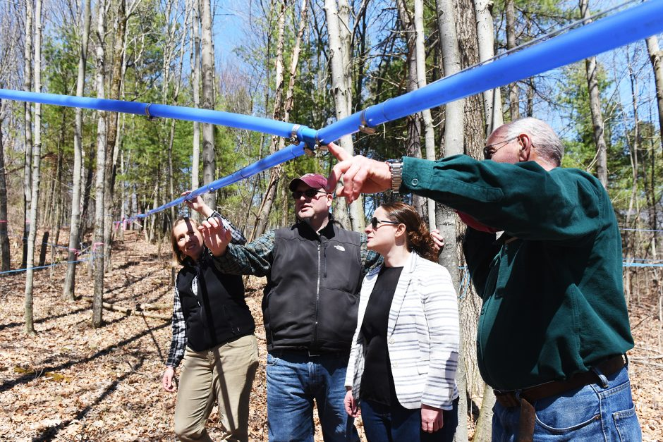 (L-R) Erica, Chris, Caroline and Cal Welch demonstrate the maple taping process at their 220 plus acre property in Glenville, used for maple syrup and lumber (as a hobby) on Friday afternoon,  April 15, 2016.