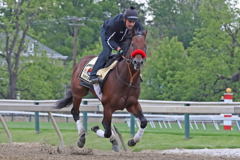 Kentucky Derby winner Nyquist, shown working out at Pimlico Race Course Thursday, will try to win the second leg of the Triple Crown in today's 141st running of The Preakness Stakes.