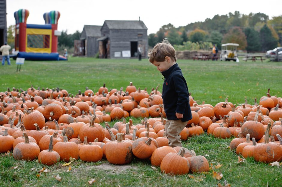 More than 1,000 people descended on Rotterdam Junction on Sunday for the third annual Fall Foliage Festival, hosted by Schenectady County in partnership with the Schenectady County Historical Society.