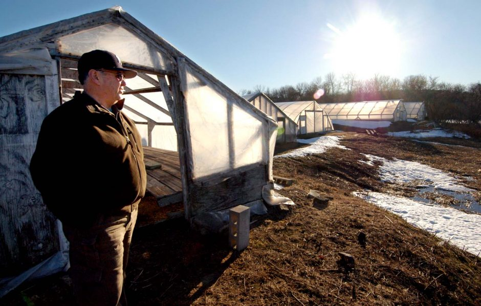 Melvin Burger stands next to a greenhouse as he looks out at the E.M. Burger Farm his family has run for generations on the Niska Isle in Niskayuna. Roy Burger, Melvin's brother, now runs the greenhouse business. The state is planning to replace the