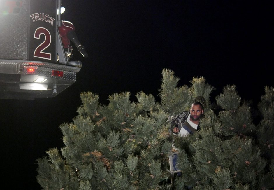 The bucket of a Schenectady Fire Department ladder truck hovers over Scott Modest, who climbed to the top of a tree in the westbound lane of Interstate 890 on March 11 and remained there for nearly 11 hours.
