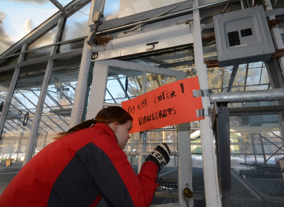 Jenny Hudman, Grower/Educator,Roots and Wisdom cautiously peers through an area where snow has smashed the glass in one of the greenhouses in Central Park.