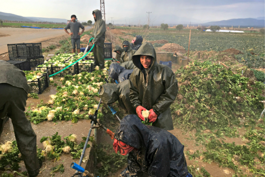 Ismail Alanzi, 15, a Syrian refugee who works as a farm laborer, in Turkey on Feb. 21, 2017.