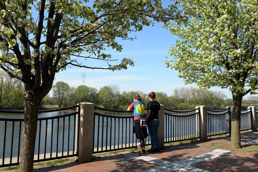 People stop to look over the Mohawk River under blossoming crabapple trees in the Stockade's Riverside Park.