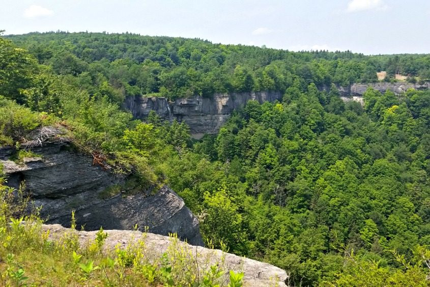 A view of John Boyd Thacher State Park in July 2015.