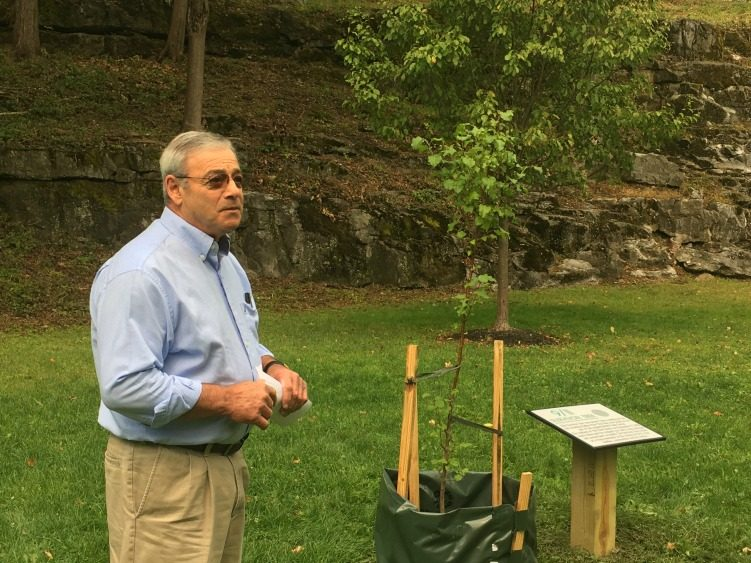 """Saratoga Springs Public Works Commissioner Anthony """"Skip"""" Scirocco speaks Tuesday at High Rock Park about the """"Survivor Tree."""""""