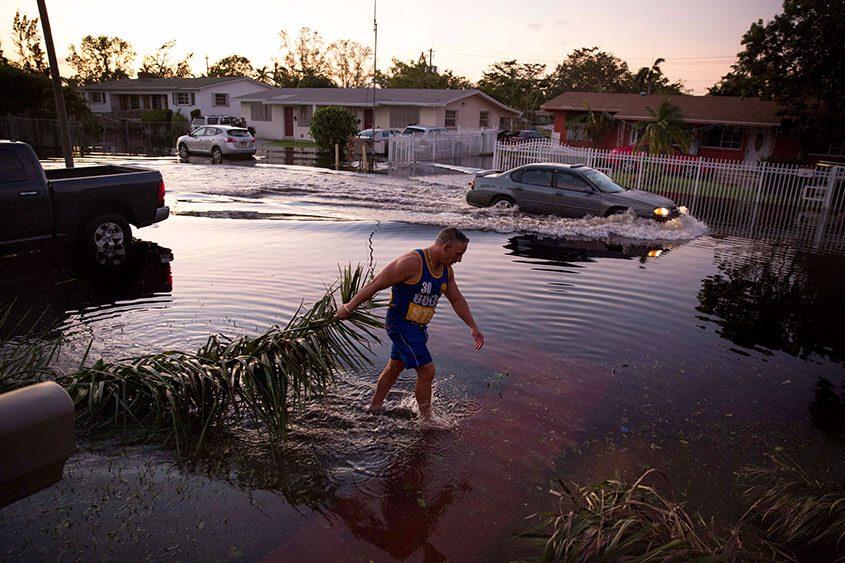 Jose Dominguez Sr. cleans up debris following Hurricane Irma in North Miami, Fla., on Sept. 11, 2017.
