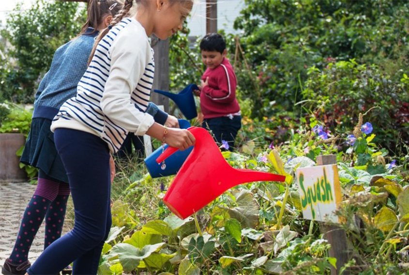 Investments in school food programs can lead to better educational and physical health.