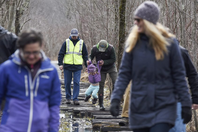 Saratoga PLAN Stewardship Coordinator Greg Redling leads a walk along the Bog Meadow Brook Nature Trail on Tuesday.