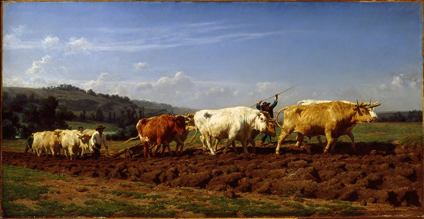 """Plowing in Vivernais,"" 1850, Rose Bonheur, oil on canvas, at the Clark Art Institute."