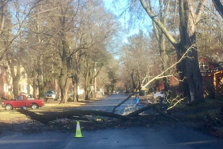 A branch down across Dean Street in Niskayuna Tuesday morning