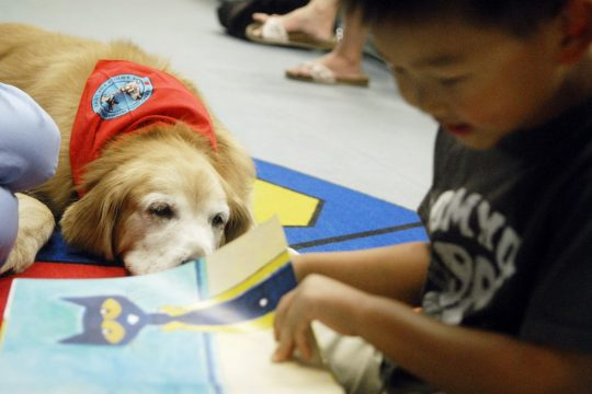 A child reads to a dog at a 2015 Clifton Park-Halfmoon Library event