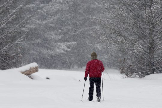A person sets out to cross country ski from the Warming Hut at Saratoga Spa State Park Tuesday