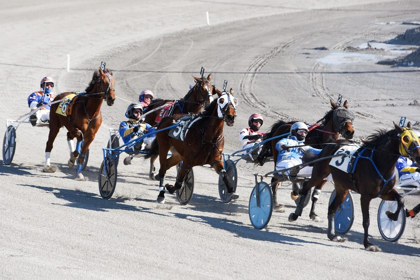 Horses and drivers enter the final turn of the 2nd race on Sunday at Saratoga Casino and Raceway.