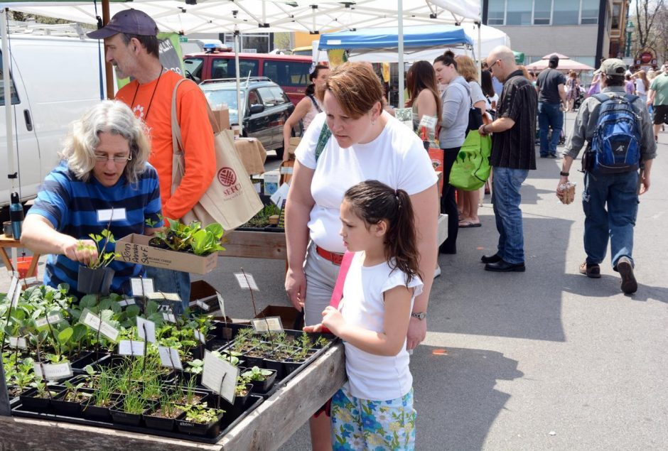 The market would be similar to Schenectady's Green Market, pictured in 2015.