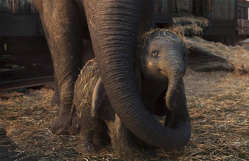 """A scene from the live-action movie """"Dumbo."""""""