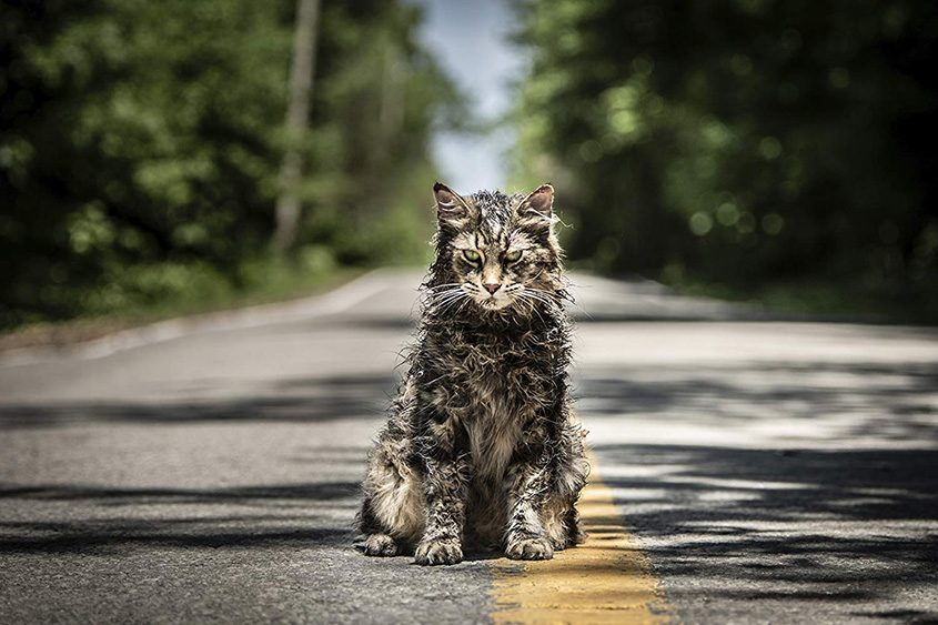 """An image from """"Pet Sematary."""""""