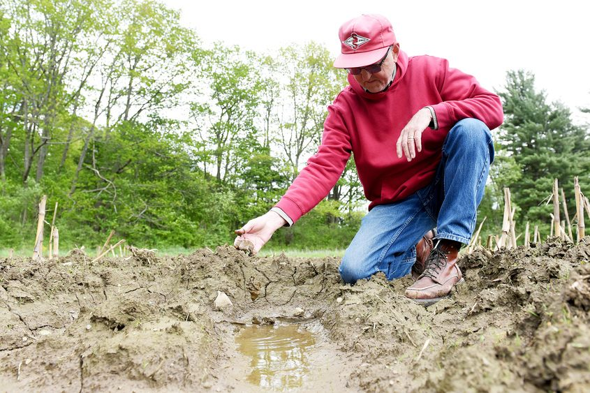Owner of Eildon Tweed Farm, Dave Wood shows how wet on one of their properties are in West Charlton on Friday.