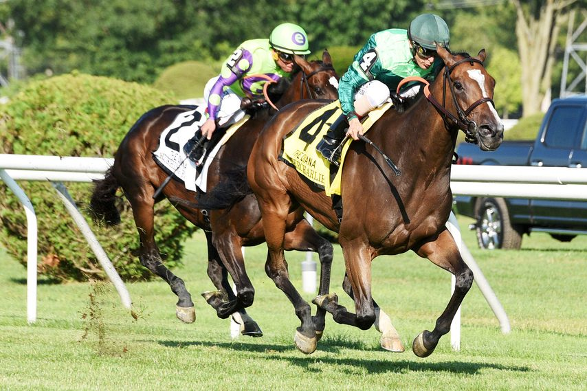 Sistercharlie moves past stablemate Rushing Fall to win her second straight Diana at Saratoga.