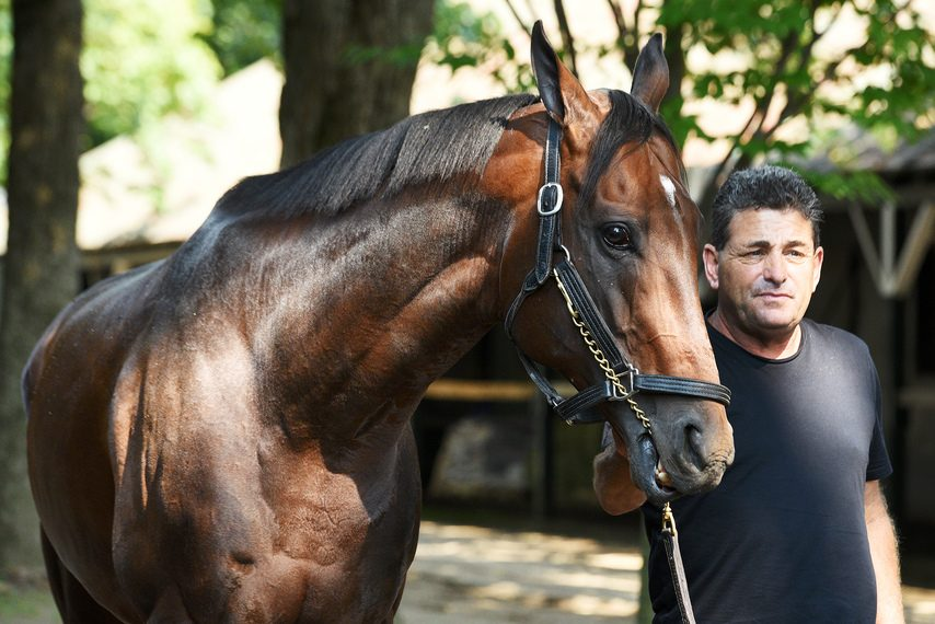 Assistant trainer Jimmy Barnes leads McKinzie around for a walk shortly after arriving at Saratoga Race Course Tuesday.