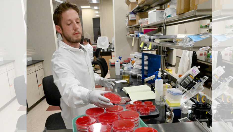 Facilities Manager, Steve Fikes with cultures in one of the lab areas at the Institute for Clinical Pharmacodynamics.