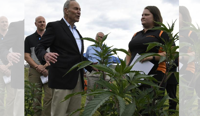 U.S. Sen. Charles Schumer, D-N.Y., talks Monday with Lesley Judd, SUNY Cobleskill assistant professor of plant science.