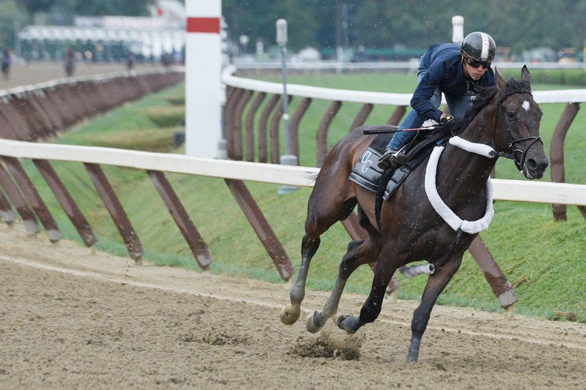Tax and Irad Ortiz Jr. pass the half-mile pole on the way to very sharp four-furlong work for the Aug. 24 Travers.