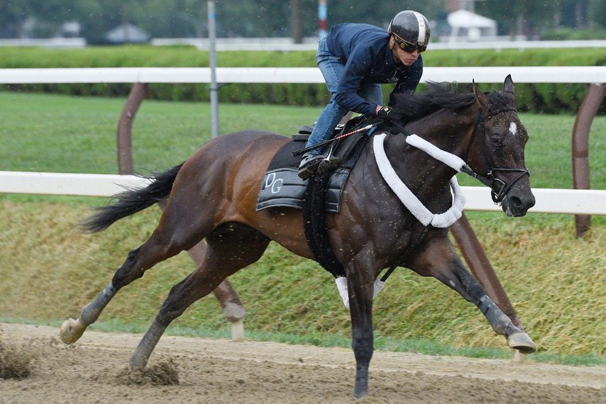Tax, with Irad Ortiz Jr. aboard, snaps off a 47.33 for four furlongs on the Saratoga main track last Friday.
